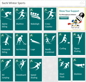 Sochi Winter sports