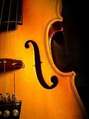violin by Emi Yanez