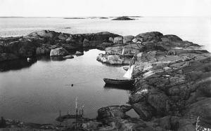 saari19